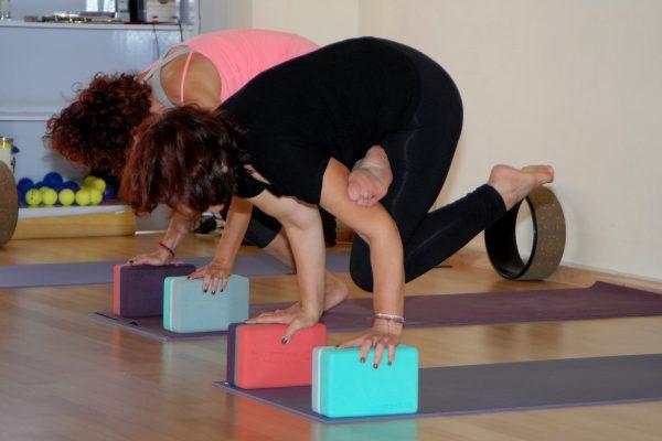 Hatha Yoga - Dynamic flow