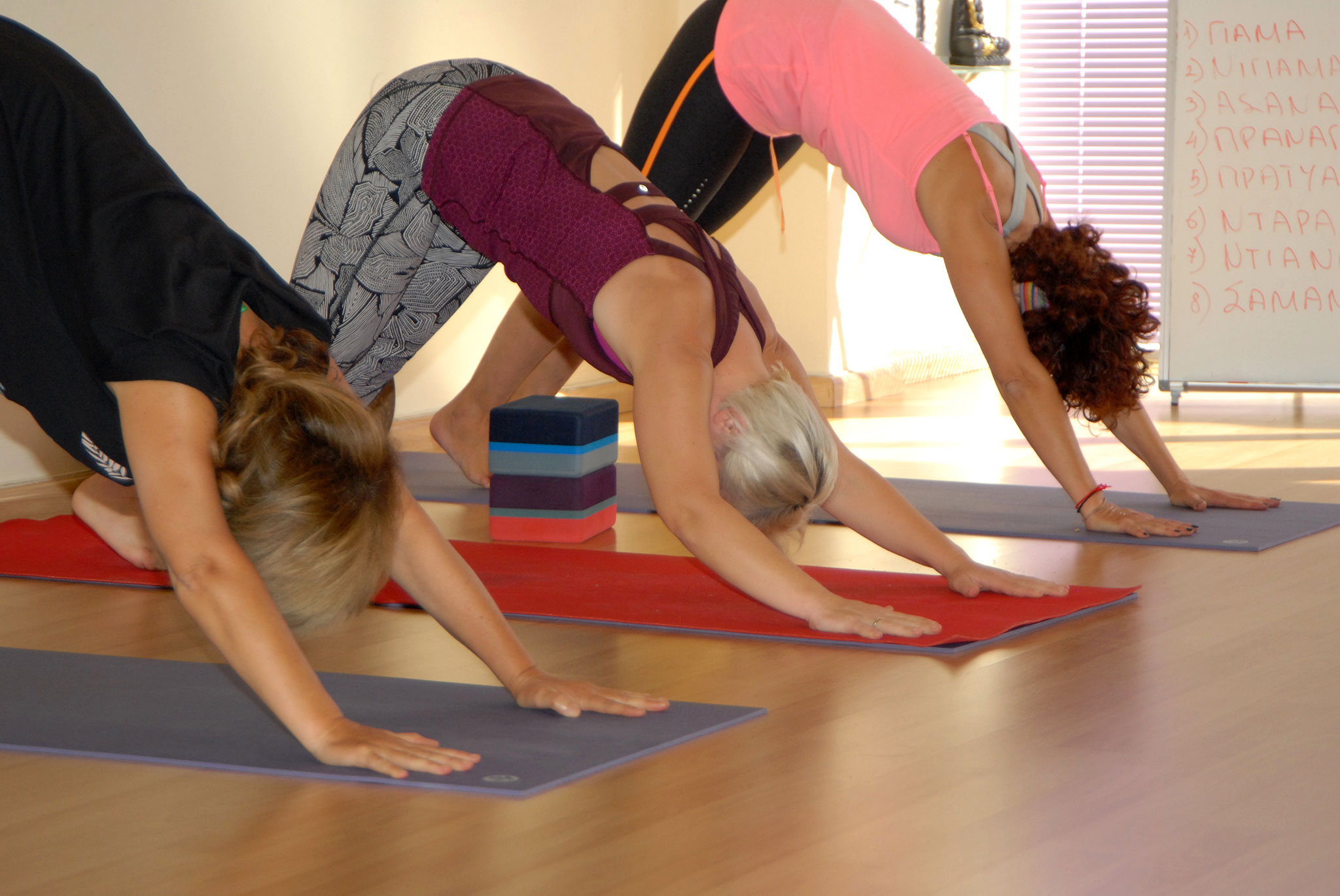 Hatha Yoga - Vinyasa flow - Aceso yoga academy